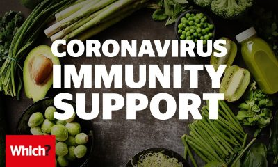 immunity power booster food