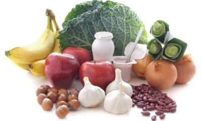 prebiotic food