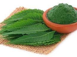 Neem infused DIYs that will help you say goodbye to an itchy, flaky scalp